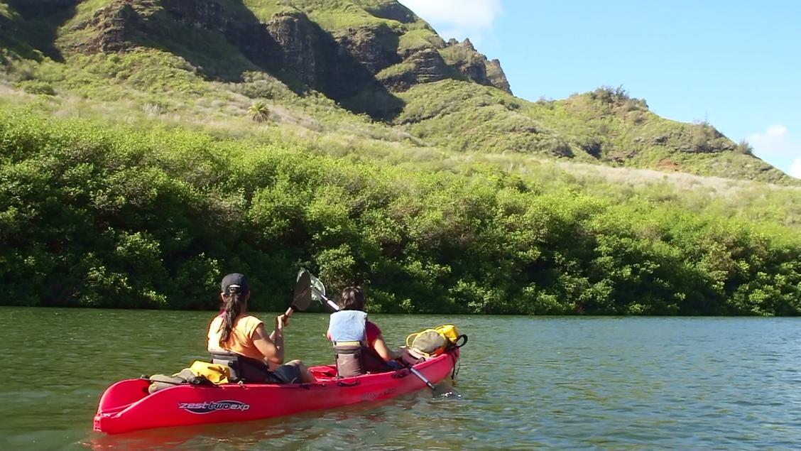 Wailua River Kayak Tour - Rainbow Kayak Tours
